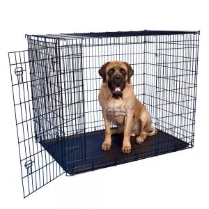 Grreat Choice® Double Door Wire Dog Crate, 54″