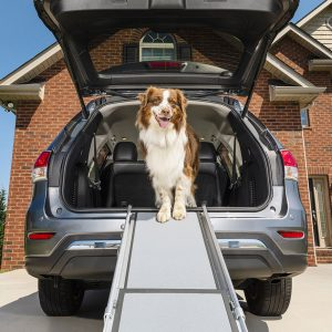 PetSafe Happy Ride™ Telescoping Dog Ramp